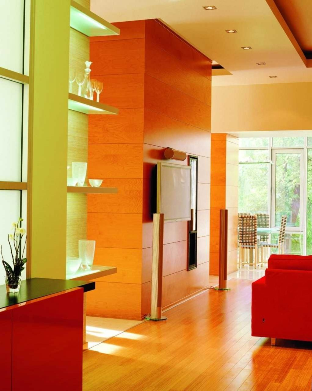 Living Room Orange Rooms Walls Design Ideas Burnt Green Pink Wall