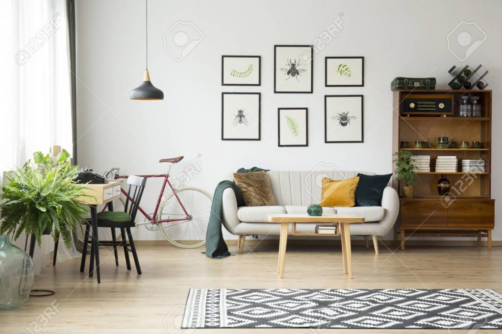 Patterned Rug And Fern In Bright Vintage Living Room Interior