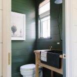 Trend For 2017 Dark Green Guest Bath Lets Do This Shiplap